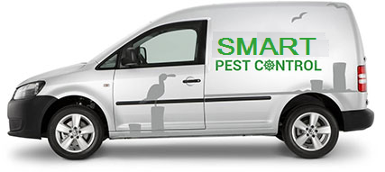 pest control vehicle advertising