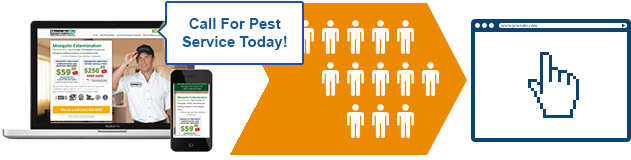 Custom Trackable Pest Control Websites and Landing Page